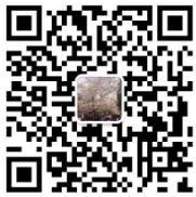张家港大唐置业7的微信