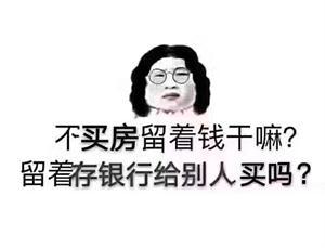 张家港昌吉不动产36张鹏程的头像