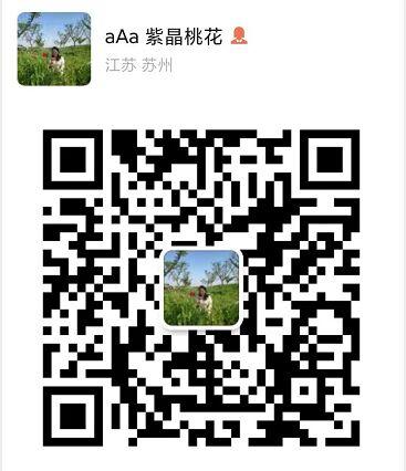 张家港中港信息2微信二维码