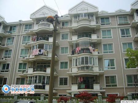 新华新村小区照片