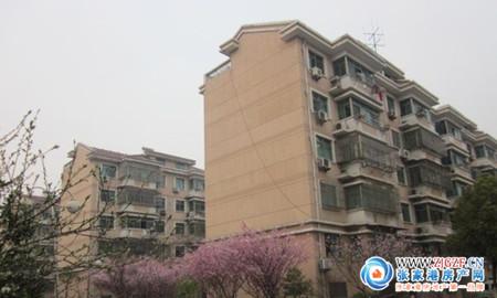 泗港善港村四组小区照片