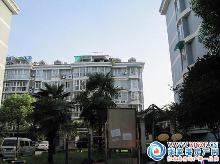 锦丰镇西兴花园小区照片