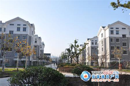 金桥新村小区照片