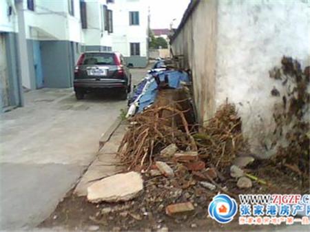 牡丹新村小区照片