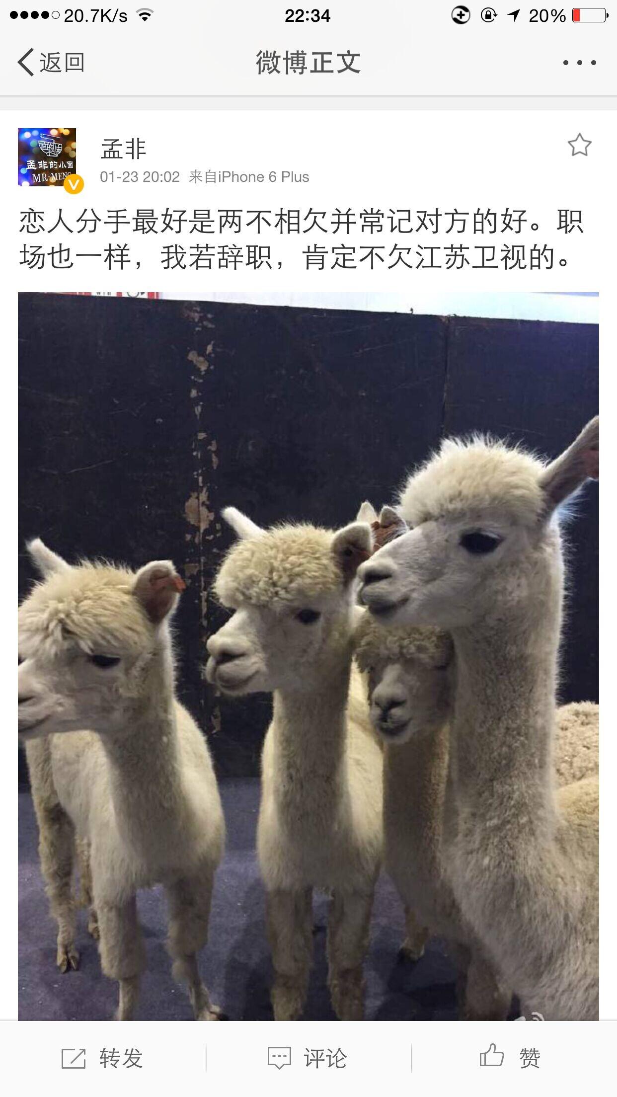 孟非发微博配图 草泥马 疑似辞职江苏卫视