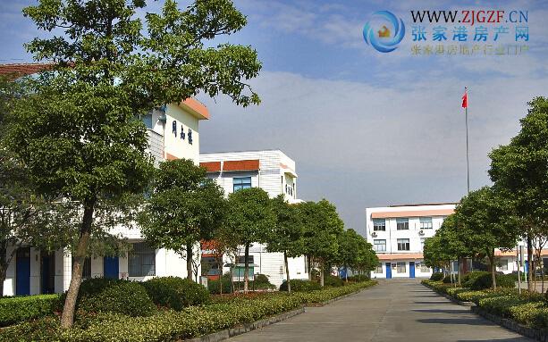 张家港西张小学(凤凰中心小学)实景照片